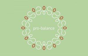 Das Pro Balance Institut